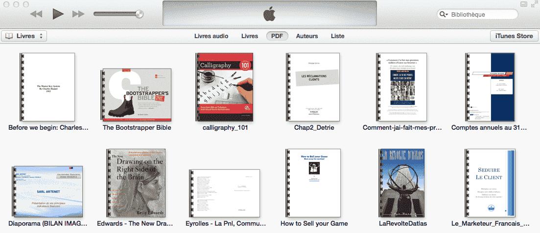 Comment lire un PDF sur iPad