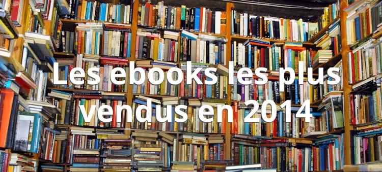 ebooks-ventes-2014