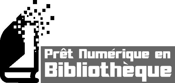 PNB : Prêt Numrique en Bibliothèque