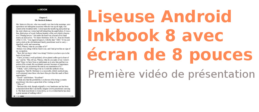 Liseuse Inkbook 8