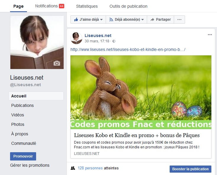 page facebook liseuses