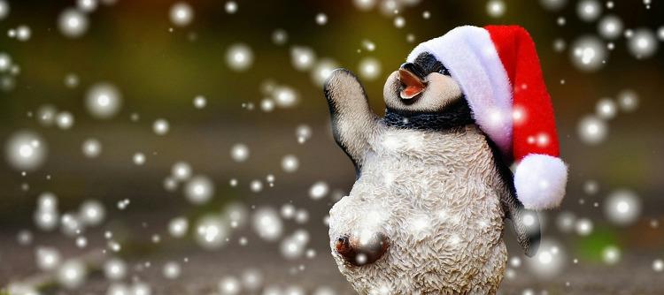 guide d'achat décembre pinguoin noel