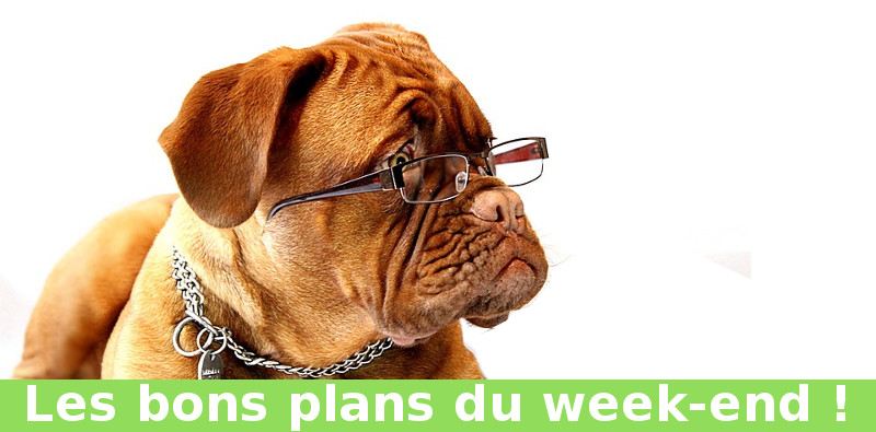 Les bons plans du week-end