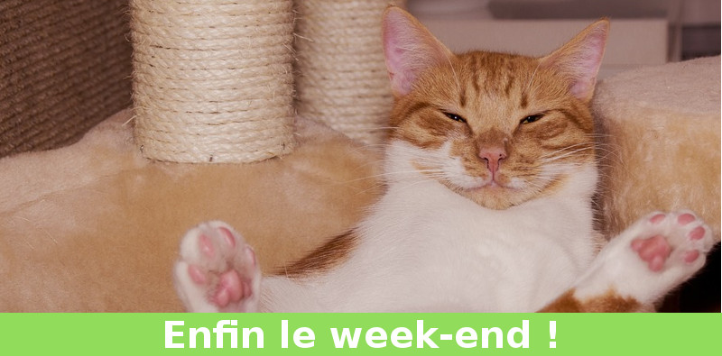 week end chat tranquille oklm