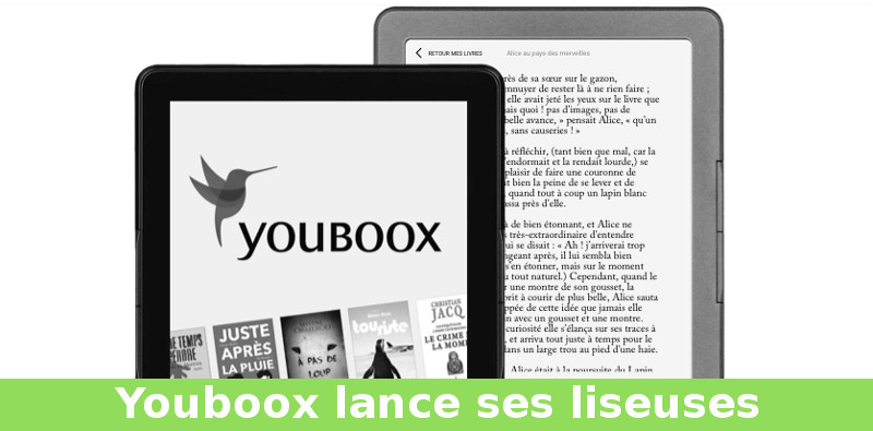 liseuse youboox france inkbook