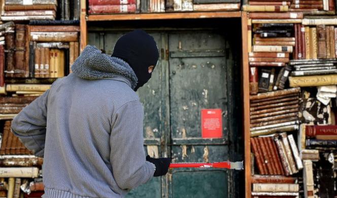 pirate ebook livre france