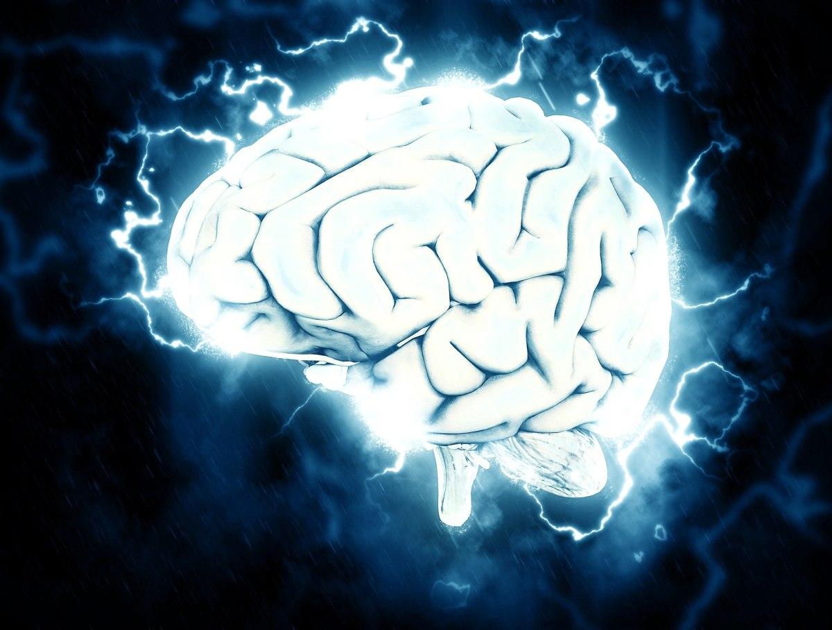 la lecture a un effet sur le cerveau